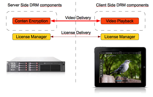 iOS DRM Architecture
